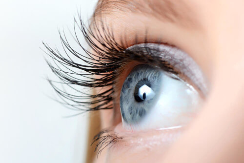 mechanizmy ochronne oczu