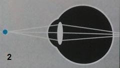 akomodacja oka - nieostry obraz